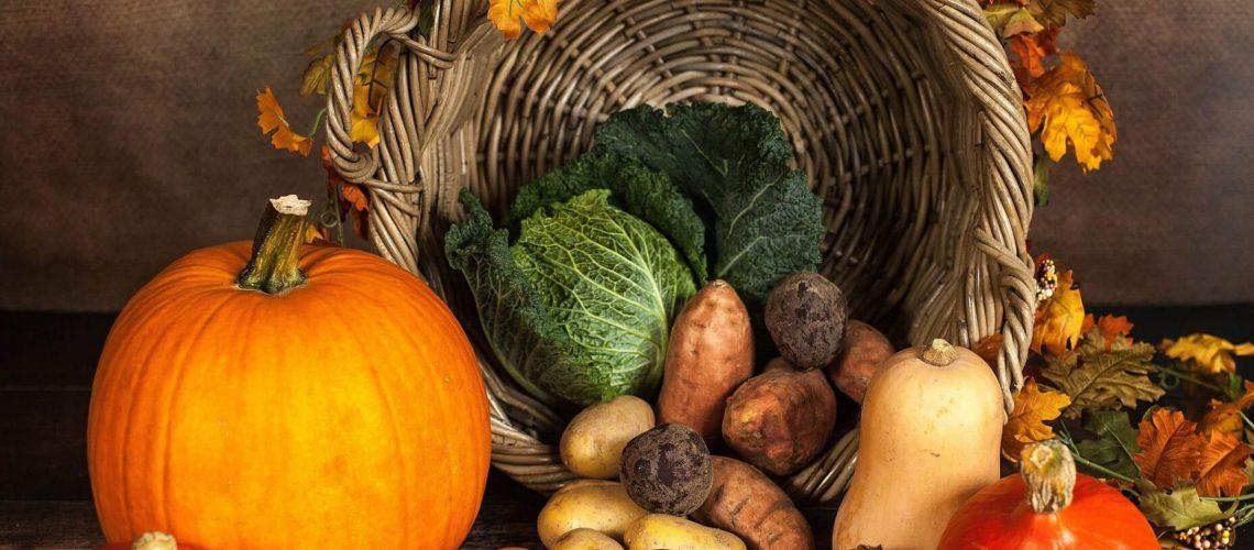 FrachtPilot Direvtvermarktung PayPal Software Lebensmittel Rechnung Kosten Vorteile Kalkulation Rentabel Lieferservice